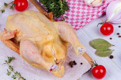 Whole fresh raw chicken prepared for roast with thyme, basil and tomatoes cherry Stock Photography
