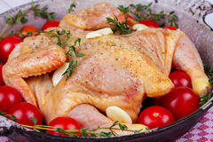 Whole fresh raw chicken prepared for roast with thyme and tomatoes cherry. Whole fresh raw chicken prepared for roast with thyme and tomatoes cherry Royalty Free Stock Photo