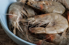 Whole fresh raw shrimps seafood. In bowl ready to cook Royalty Free Stock Images