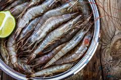 Whole fresh raw shrimps seafood closeup. In bowl with lime Stock Image