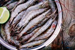 Whole fresh raw shrimps seafood closeup. In bowl with lime Royalty Free Stock Photo