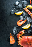 Whole fresh sea food dark background Royalty Free Stock Photos