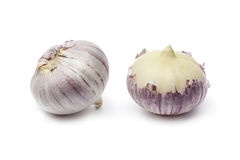 Whole fresh single clove garlic Royalty Free Stock Images
