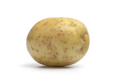 Whole fresh single potato Stock Image