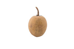 Whole fresh single sapodilla isolated Royalty Free Stock Photos