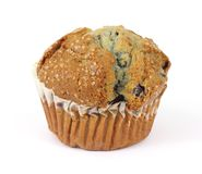 Whole Freshly Baked Blueberry Muffin Royalty Free Stock Photos