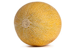 Whole Galia Melon on white. Stock Photo