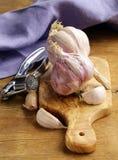 Whole garlic bulbs Stock Image