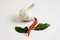 Whole Garlic, Chili and Bay Leaves. A collection of three spices and seasonings including a whole garlic bulb, a red chili pepper, and two green bay leaves, all Royalty Free Stock Photography