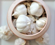 Whole Garlic Stock Photography