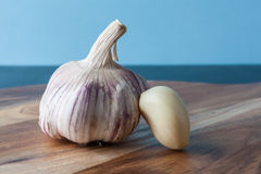 Whole garlic and peeled clove Stock Photos