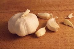 Whole garlic. With three pieces around Royalty Free Stock Photography