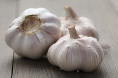 Whole garlic on wood table Stock Photography