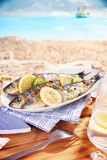 Whole garnished pan fried fish Stock Images