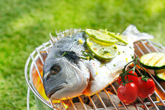 Whole gilthead breem roasting on a fire Royalty Free Stock Photo