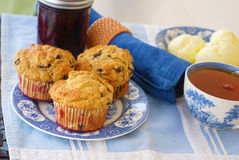 Whole Grain Blueberry Muffins Royalty Free Stock Image