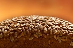 Whole grain bread. Detail of whole grain bread Stock Photo