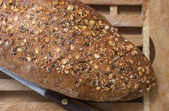 Whole Grain Bread detail Royalty Free Stock Photos