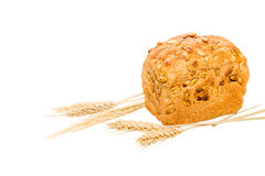 Whole grain bread with ears Stock Photo
