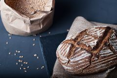 Whole grain bread with wheat grains Stock Images