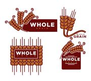 Whole grain cereal bakery product vector icons templates set stock illustration