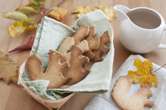 Whole Grain Cookies Royalty Free Stock Photos