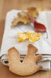 Whole Grain Cookies Stock Photography