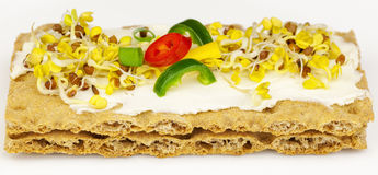 Whole grain crisp bread with sprouts. On light grey royalty free stock image