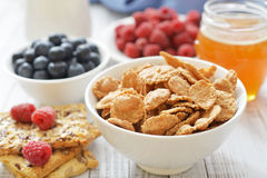 Whole-grain flakes Royalty Free Stock Photography