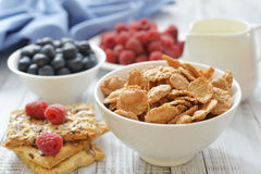 Whole-grain flakes Stock Photos