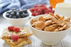 Whole-grain flakes Stock Images
