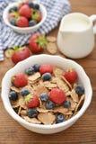 Whole-grain flakes Stock Photo