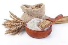 Whole grain flour Royalty Free Stock Images