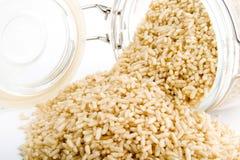 Whole Grain Instant Rice. Bulk whole grain instant cooking rice stock image