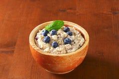 Whole grain oat porridge Royalty Free Stock Photography