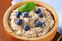 Whole grain oat porridge Stock Images