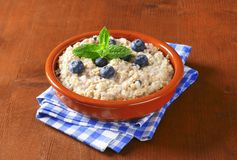 Whole grain oat porridge Royalty Free Stock Photos