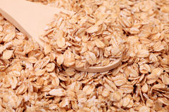 Whole grain oats Stock Photo