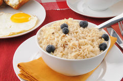 Whole grain rice and nilk with blueberries Stock Photography