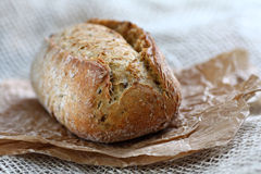 Whole grain roll Royalty Free Stock Photo