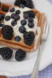 Whole Grain Waffles with whipped cream Stock Images