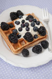 Whole Grain Waffles with whipped cream Royalty Free Stock Photography