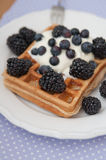 Whole Grain Waffles with whipped cream Stock Photos