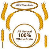 Whole Grain Wheat Set Stock Photo