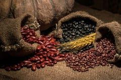 Whole grains. Royalty Free Stock Photos