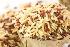 Whole grains rice. Pile of whole grains rice stock photos
