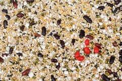 Whole grains Stock Image
