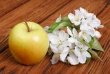 Whole green apple with flowers Royalty Free Stock Images