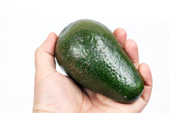 Whole green avocado in the hand over white background.  Royalty Free Stock Images