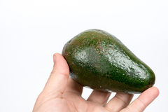 Whole green avocado in the hand over white background.  Royalty Free Stock Photo